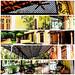Mosaico Hacienda Xcanat�n - M�rida Yucat�n M�xico 120226 C2 PMk med