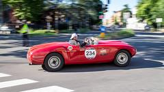 S.I.A.T.A. Daina 1500 Sport (Marco Stoppazzini) Tags: sport italia modena 1500 1000 emiliaromagna daina miglia siata canoneosm