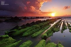 Marea roja (Hector Prada) Tags: sunset red sea sky musgo primavera beach clouds atardecer mar spring rojo playa cielo nubes barrika hectorprada