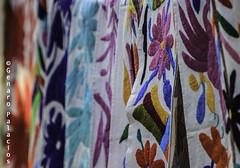 Market at San Jacinto's Plaza (Genaro Palacios Photographer) Tags: travel flowers color tourism animals horizontal mexico mexicocity df embroidery striking mx hidalgo hens sanangel workingwomen tenangodedoria tenangos saturdaysbazaar sanjacintosplaza