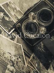 Memories (David Cucaln) Tags: blackandwhite stilllife david macro art classic blancoynegro del 35mm vintage arte memories olympus retro antigua paso yashica camara recuerdos memoria oldcamera bodegon fineartphotography tiempo 2014 fotografias photographies cucalon olympuse510 davidcucalon pastoftime