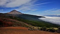 Pico del Teide (3718m) (flowerikka) Tags: clouds island lava spain bluesky pines tenerife teide volcan