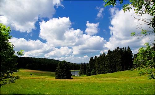 Harz Landscape 3