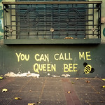 You can call me queen bee (Mendoza, Argentina)