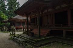 Ninai-do, Hieizan, Enryaku-ji Temple, Kyoto, Shiga /  (Kaoru Honda) Tags: city summer mountain green nature rain japan landscape temple japanese nikon kyoto traditional      earlysummer shiga saito  freshgreen     enryakuji         d7000