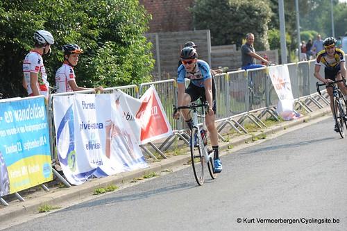 Geel Oosterlo  (337)