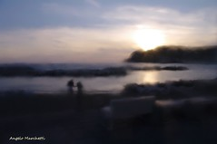 ... al tramonto (Plebejus argus) Tags: tramonto ischia isola sogno sangelo passeggiata