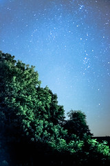 The Little Things (Just Add Light) Tags: trees light beauty wisconsin night way stars high long exposure quiet country peaceful iso galaxy milky noisy thelittlethings gnas justaddlight