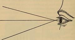 Anglų lietuvių žodynas. Žodis line of thought reiškia linijos minties lietuviškai.