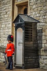 Queen's Guard (jkuphotos) Tags: uk england london unitedkingdom guard british crownjewels toweroflondon queensguard