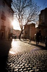 'Cobblestone', Portugal, Lisbon (WanderingtheWorld (www.ChrisFord.com)) Tags: road street travel light sunset people tree portugal analog 35mm europe view kodak lisbon exploring center scene highlights cobblestone contax 400 g2 portra