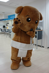 DSC07985 () Tags: mascots