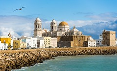 Dreamy Cadiz (Franco Beccari) Tags: world city trip travel blue red sea vacation white holiday black color colour green bird tourism church nature yellow architecture photography spain nikon europe cathedral seagull cadiz coastline nikkor andalusia albatros d600