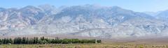 White Mountains (Jeff Addicott) Tags: ranch panorama sunlight mountain haze desert 85mm whitemountains stitched rugged sagebrush minoltamd85mm12
