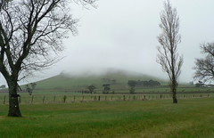 A foggy start to the road trip! (The Pocket Rocket) Tags: fog day australia victoria kingston if explore292 roadtrip2014