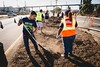 Operation Clean Sweep 2014 (Port of San Diego) Tags: sandiego cleanup environment sandiegobay harbordrive portofsandiego barriologan sdpta porttenantsassociation