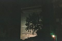 48410009 (72 kilos) Tags: camera film night analog 35mm photo photograph nightlight late artificiallight
