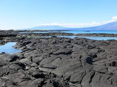 Punta Espinosa (Baractus) Tags: john galapagos punta fernandina oates angelito espinosa