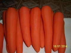 (8) (dr.kattoub) Tags: stuffed         stuffedcarrot                 tammamkattoub drtammamkattoub