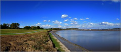 Pickerings Pastures Local Nature Reserve (Halebank) 22nd September 2014 (Cassini2008) Tags: nature wildlife rivermersey pickeringspastures pickeringspastureslocalnaturereserve