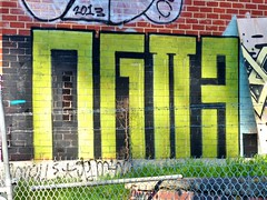 og23 (Rkt-nxr) Tags: flies nxr g23 og23 flyscrew fliescrew offguts footlooseyouth