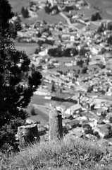 Different Focusing (HimynameisPaolo) Tags: city trip travel summer blackandwhite bw italy panorama white mountain abstract black mountains tree travelling nature architecture point landscape landscapes focus italia different estate view pov top cities valle natura panoramic val valley vista gita albero alto paesaggi bianco nero architettura bianconero fuoco paesaggio trentino biancoenero pozza adige 2014 architetture pera architectures sfocato focusing messa sfocata fassa meida jumela