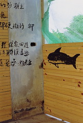 _29 (Taiwan's Riccardo) Tags: 2016 taiwan 135film negative kodakcolorplus200 slr color plustek8200i      zeisslens planar cymount fixed 50mmf17