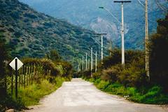 E L A T A J O (Jonhatan Photography) Tags: nature explorer vsco canon chile sudamerica road camino el atajo ways