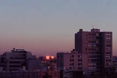 (AntoineLegond) Tags: paris bnf cityscape architecture building sunset contaxg2 zeiss sonnar portra
