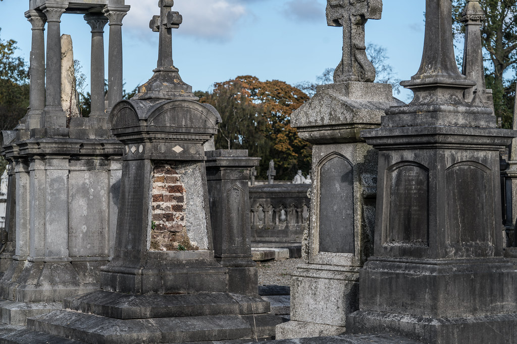 A QUICK VISIT TO GLASNEVIN CEMETERY[SONY F2.8 70-200 GM LENS]-122089