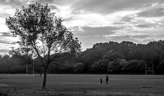 IMG_4888 (Lens a Lot) Tags: carl zeiss jena tessar red t 50mm f35 1949 | 14 blades iris m42 f11 black white tree people land scape rugby pitch depth field vintage german fixed ddr length prime lens manual