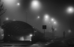 Туманный Минск завораживает и пугает...  #минск #беларусь #minskgram #вечер #красота #minskcity #город #ночь #прогулка #выходные #огни #night #lights #красиво #city #улица #street #туман #fog #silenthill #архитектура #столица #осень #autumn #погода #холод