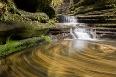 Autumn At Matthiessen/ Gold Rush (Kyle William Russell) Tags: gold rush golden autumn fall waterfall water flow movement swirl color moss algae grass stone white green lush wading illinois matthiessen leaves current surreal beautiful travel kyle russell photography utica