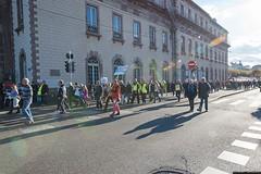 _DSC8752 (Copier) (GCO NON MERCI) Tags: manifestationcontrelegco 15octobre2016 strasbourg gco a355 cos vinci tousuniscontrelegco vincigehheim