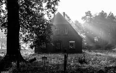 Haus (mthavs) Tags: deutschland germany europe europa bremen sw schwarzweiss blackwhite bw teufelsmoor landschaft landscape