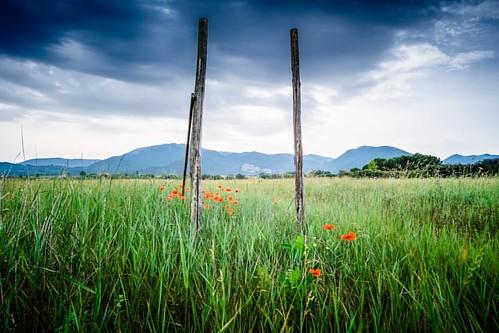 A Field near Pereto  #best_lazio_pics #lazioisme #yallerslazio #visitlazio #ig_worldclub #ig_italy #italia_super_pics #loves_united_lazio #ig_lazio #pereto #fosforonero #fotobastardi #fujixt1 #fujilove #fujixseries #poppy #field #green #beautifulscenery #