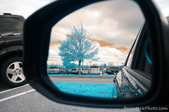 1-web-watermark (Brian M Hale) Tags: infrared ir infra red mirror reflections reflection tree parking lot cars brian hale brianhalephoto