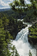A powerful waterfall in Yellowstone (kc_hoang) Tags: waterfall yellowstone nationalparks sonyalpha sonya350 tamminhphotography travelplanet worldtravel worldwidelandscapes
