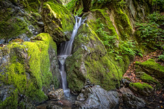 The rain has returned ... (Sonarsgs) Tags: waterfalls outdoors nature moss green