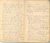 Krueger-Journal_p9-10 (Max Kade Institute for German-American Studies) Tags: krueger journal handwriting immigration german script frederickkrueger martinkrueger handwritten cursive kurrent