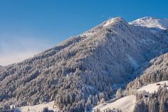 Kitzbhel (elzauer) Tags: kitzbhel tyrol nature winter kirchbergintirol tirol austria at