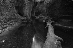 Finnich Glen and 'The Devil's Pulpit' (Henry Hemming) Tags: finnich glen devils pulpit killearn trossachs loch lomond scotland highlands river canyon gorge dark damp moss secret water creek landscape outdoor tree trunk stream reflections