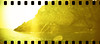 film (La fille renne) Tags: film analog 35mm lafillerenne sprocketrocket lomographyxpro200 xpro crossprocessing landscape nature sea portcros roadtrip travel