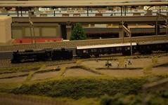 JNR class D51 (Touhoku ver.) (kiha581523) Tags: nikon d90 nikkor 1685 d51 kato locomotive train zug jnr eisenbahn railway scale model