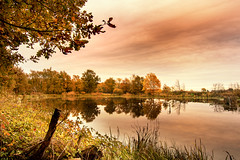 Au bord de l'tang (S@ndrine Nel) Tags: reflections autumn trees pond tang automne arbres reflets nelsandrine