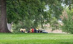 Domingo no parque... (pmenge) Tags: co denver parque 18135 xt1