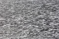 161010-5533-Craigville (Sterne Slaven) Tags: plimothplantation roosters spiderwebs oldburialhill pilgrims clamdiggers sanddunes barnstable taunton salem lynn sexynude sunhalo fullmoon sterneslaven tide waves water fountain 1600s wampanoag mayflower pelt harbor chathamma seals ocean atlanticocean coastal newengland actors