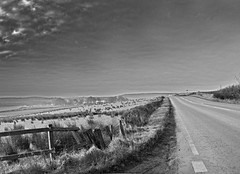 Black and white road scenery (frankhimself) Tags: country road bw black white scenery car lights headlights lane darvel kilmarnock scotland tourism travel ngc ntc ntg