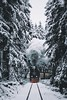 Driving home for Christmas. (sergeyashin) Tags: ifttt 500px landscape fog frozen cold nature travel tree railway snow wood mountain ice weather frost track vehicle outdoors harz winter vscofilm transportation system