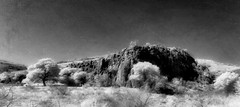 Limpia Canyon, Davis Mountains